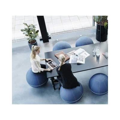 Gotessons Office Ballz 55 cm SBA4 GOTESSONSBallons ergonomiques